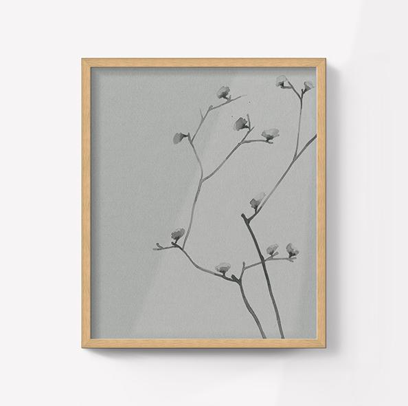folha carvalho